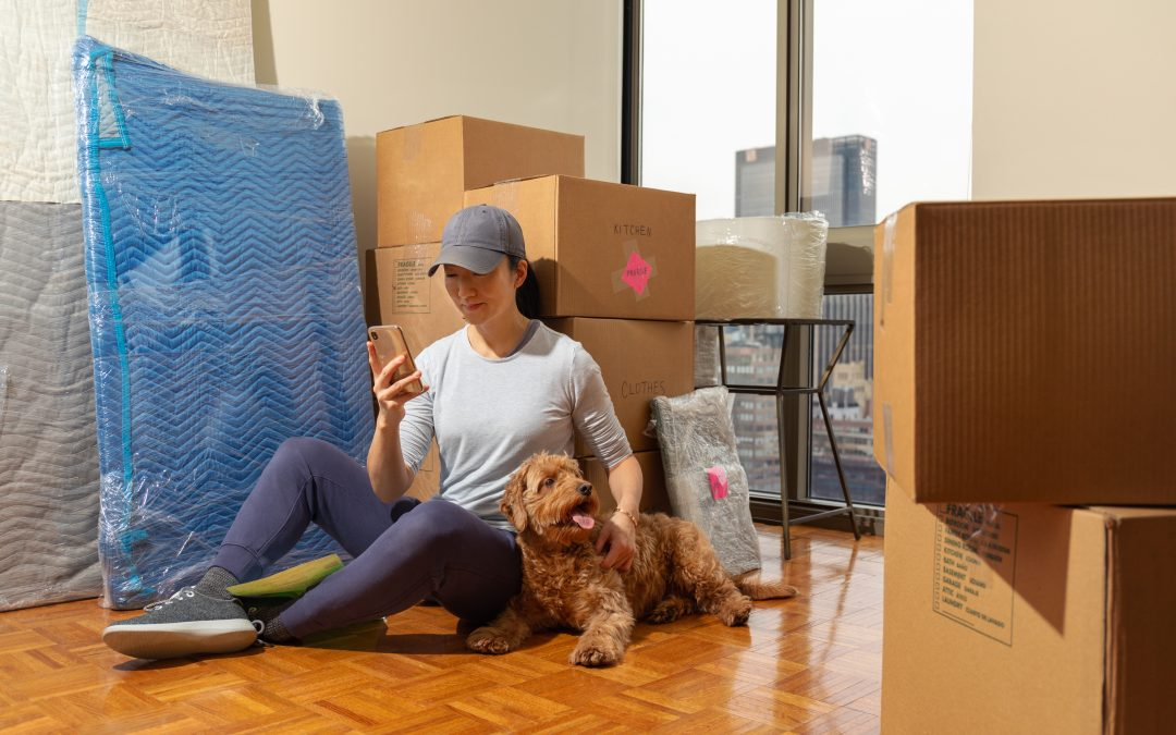The ASPCA's Best Advice for Moving With Pets